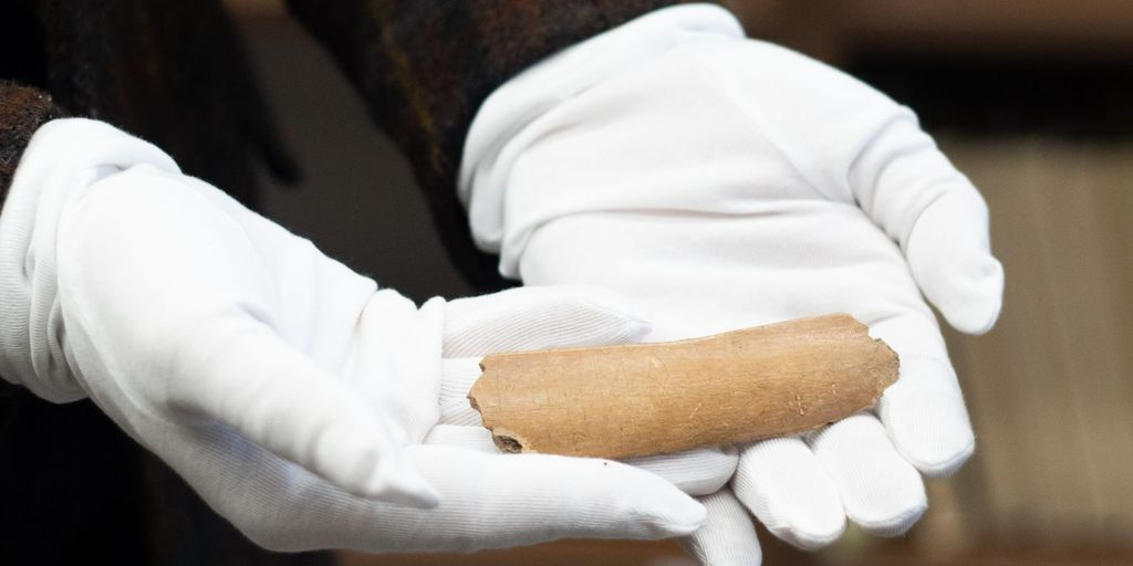 The rare cow bone discovered in the Czech Republic in 2017 dated back to the 7th century
